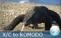 Cross-country flight to Komodo